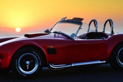 Cobra GT40 gallery (13)