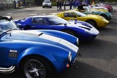 Cobra GT40 gallery (17)