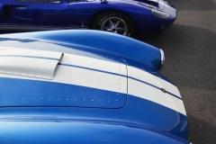 Cobra GT40 gallery (19)