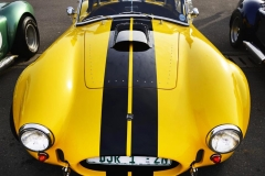 Cobra GT40 gallery (20)