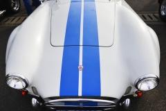 Cobra GT40 gallery (21)
