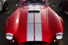 Cobra GT40 gallery (22)