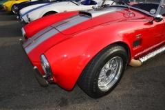 Cobra GT40 gallery (25)