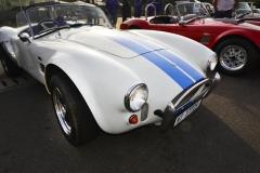 Cobra GT40 gallery (26)