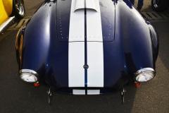 Cobra GT40 gallery (27)