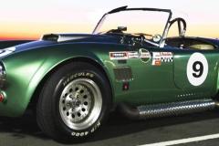 Cobra GT40 gallery (3)