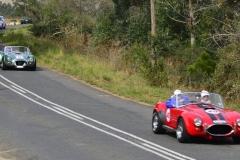 Cobra GT40 gallery (39)