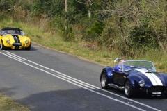 Cobra GT40 gallery (40)
