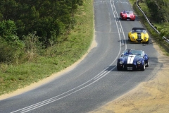 Cobra GT40 gallery (49)