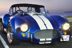 Cobra GT40 gallery (7)