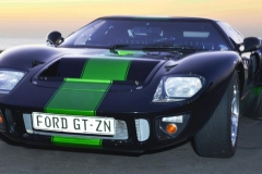 Cobra GT40 gallery (9)